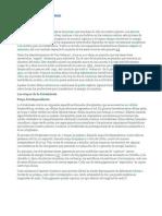 Las etapas de la fotosíntesis-trabajo