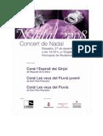 Programa Concert Nadal. Riudarenes 27/12/08