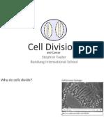 2-5 celldivision