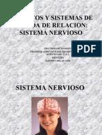 Sistema Nervioso Enfermeria