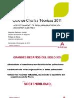 Palestra Biomasa - Uruguai