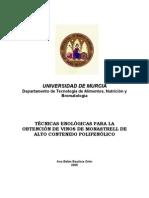 TÉCNICAS ENOLÓGICAS PARA LA OBTENCIÓN DE VINOS DE MONASTRELL DE ALTO CONTENIDO POLIFENÓLICO