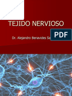 7Tejido Nervioso