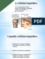 LCR Presentación2