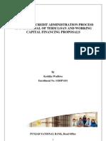 Project Report_ Pnb