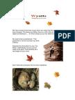 Autumn 2012 Tax Letter