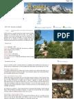 Http Www.apatita.com Senderos Alicante Bco Malafi Bco Malafi.