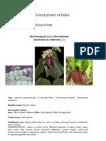 Botanische Bestandsaufnahme Indischer Heilpflanzen