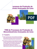 Estrutura do TRM de biocombustíveis da cana
