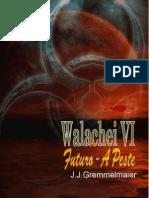 Walachei VI - João Jose Gremmelmaier