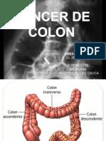 Expo ca de colon VI