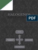 Exposición Quimica Halogenos