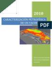Caracterizacion Petrofisica de Un Yacimiento