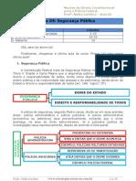 Aula 05 - Direito Constitucional.text.Marked