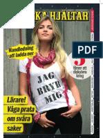 Svenska Hjältars lärarhandledning