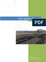 Quirke Report