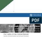 Kierunek cyfryzacji w Polsce - praktyczne konsekwencje zmian dla obywateli oraz przestrzeni publicznej