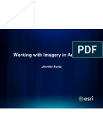 1A Working With Imagery in ArcGIS10