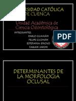 Determinantes de La Morfologia Oclusal