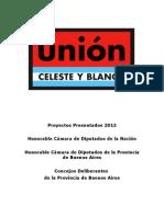 Proyectos Presentados - Unión Celeste y Blanco