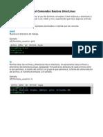 Comando s Basic Os Linux