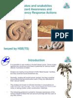 Hazard Awareness - Snakes