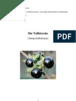 Tollkirsche(Atropa)