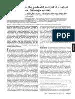 Galanin PNAS Paper