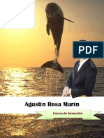 Agustin Rosa DossierFormaciones Screen