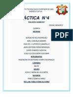 Practica (5)