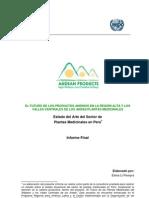 Estado Del Arte Del Sector de Plantas Medicinales en Peru 2007