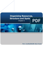 Chapter6 Organizing Resources, Structure and Systems