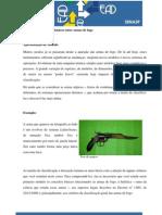 Identificao de Armas Modulo1