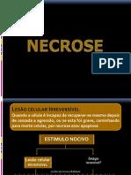 Necroses
