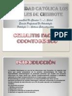 Diapositivas de Exposicion Celulitis Odontogenica Zuleta Cortez