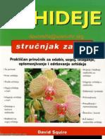 Strucnjak Za Vrt Orhideje