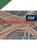 Regeneracion Ax