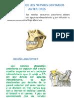 Anestesia de Los Nervios Dentarios Anteriores
