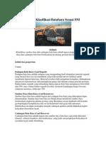 Proses Klasifikasi Batubara Sesuai SNI