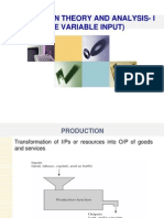 Production Theory & Analysis i