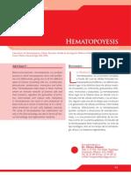 Hematopoyesis (