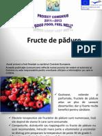 Fructe de pădure
