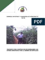 Proyecto Hortofrut 10 Has