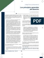 2 Los Principios Generales Del Derecho CONTROL DE LECTURA 2