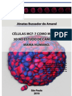 Células MCF-7 como modelo 3D no estudo de câncer de mama humano_MCF-7 cells as a 3d model in the study of human breast cancer.