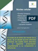 Nucleo Emmily, Maria José, Francisco y Amara