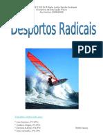 desportos radicais