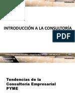 consultora-introduccin-101213022124-phpapp01