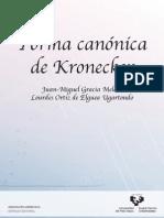 Forma Canonica Kronecker