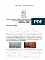 Construyendo La Identidad Patagonica - Espacio Sencillo